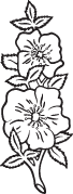 Clipart Image For Gravemarker Monument flower 05