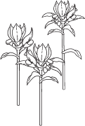 Clipart Image For Gravemarker Monument flower 06