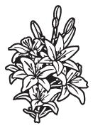 Clipart Image For Gravemarker Monument flower 21