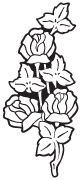 Clipart Image For Gravemarker Monument rose 10