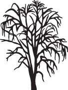 Clipart Image For Gravemarker Monument tree 07